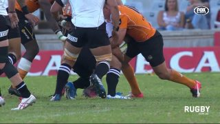 The reason Sunwolves played well against Cheetahs/Report & Movie